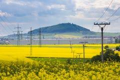 Campo amarillo de la violación de semilla oleaginosa y pilones de alto voltaje de la electricidad Imagen de archivo