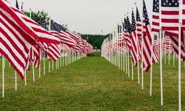 Campo americano de banderas en Memorial Day Imagen de archivo libre de regalías
