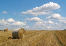 Campo & cielo blu Fotografia Stock Libera da Diritti