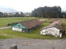 Campo Andino Fotografia Stock Libera da Diritti