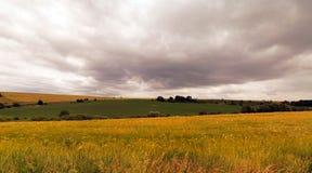 Campo antes da tempestade Imagem de Stock