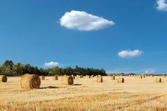 Campo ap?s a colheita do trigo com c?u azul e nuvens imagem de stock