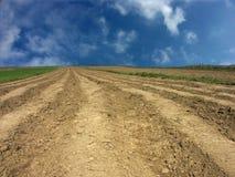 Campo arabile Immagini Stock Libere da Diritti