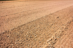 Campo arado Imagem de Stock