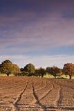 Campo arado Foto de archivo libre de regalías