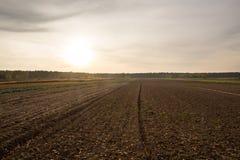 Campo arado Foto de archivo