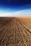 Campo arado bajo el cielo azul Imagenes de archivo