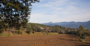 Campo arado com paisagem Imagens de Stock