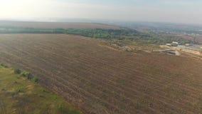 Campo arado con la opinión aérea del heno Helicóptero del tiroteo almacen de video