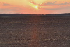 Campo arado en el amanecer Fotos de archivo