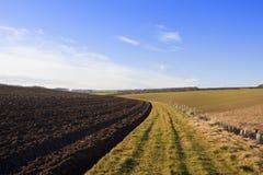 Campo arado montanhês Foto de Stock