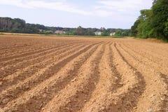 Campo arado para las cosechas de la caída Imágenes de archivo libres de regalías