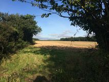 Campo arado pela pista do país Foto de Stock