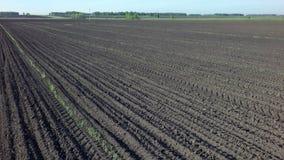 Campo arado pronto para a sementeira video estoque