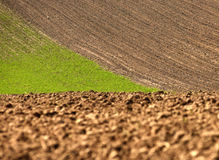 Campo arado, terra na mola, Foto de Stock
