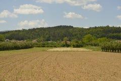 Campo arato con le tracce del trattore Immagine Stock Libera da Diritti