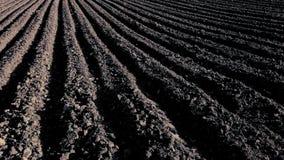 Campo arato con suolo scuro stock footage