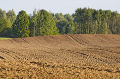 Campo arato dell'azienda agricola di agricoltura di tempo di autunno Fotografia Stock Libera da Diritti