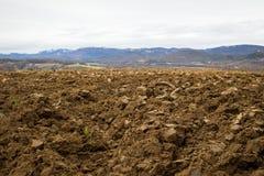 Campo arato di agricoltura Fotografie Stock