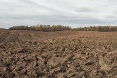 Campo arato nel giorno nuvoloso di autunno Fotografia Stock