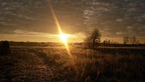 Campo atrasado do outono no por do sol Fotografia de Stock Royalty Free