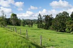 Campo australiano Imagem de Stock