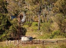 Campo australiano con gumtrees y el molino de viento Foto de archivo libre de regalías