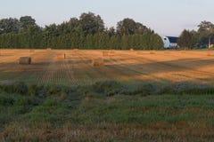 Campo Autumn Hay Bales de los granjeros Imagen de archivo
