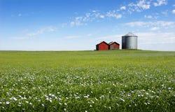 Campo azul Imagen de archivo libre de regalías