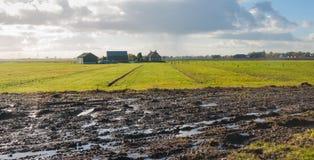 Campo bagnato nella stagione di autunno Fotografie Stock Libere da Diritti