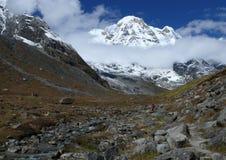 Campo bajo de Annapurna Foto de archivo
