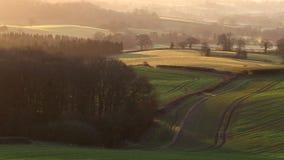 Campo británico escénico en la salida del sol metrajes