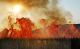 Campo Burning Fotografia Stock Libera da Diritti