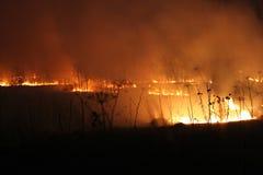 Campo Burning alla notte Fotografia Stock Libera da Diritti