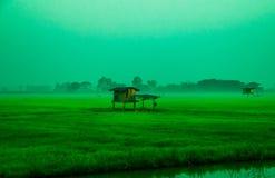 Campo & cabana verdes Imagens de Stock Royalty Free