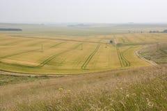 Campo cerca de Calne. Wiltshire. Inglaterra Fotos de archivo libres de regalías