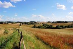 Campo cerca de Olecko, Polonia de Masuria foto de archivo libre de regalías