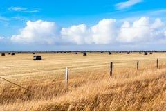 Campo cercado en el campo de Islandia y del cielo azul fotografía de archivo