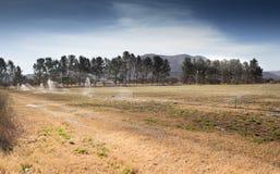 Campo che è irrigato immagini stock libere da diritti