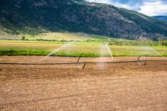 Campo che è irrigato su Sunny Summer Day fotografia stock