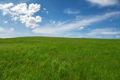 Campo, cielo azul y nubes Fotografía de archivo