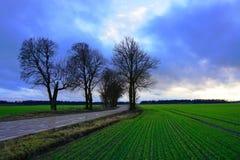 Campo, cielo blu e nuvole verdi Immagine Stock