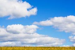 Campo, cielo y nubes Imagen de archivo libre de regalías