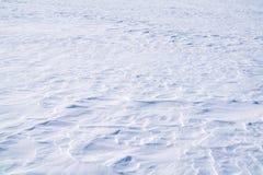 Campo, coberto com a neve pura na estação do inverno foto de stock