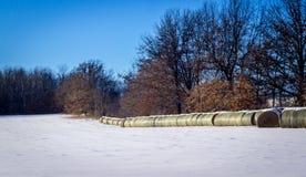 Campo coberto de neve do feno no inverno Foto de Stock