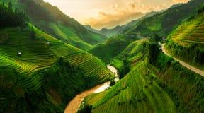 Campo colgante del arroz en MU Cang Chai, Vietnam Foto de archivo