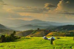 Campo colgante del arroz, Mae Chaem, Chiang Mai, Tailandia Foto de archivo