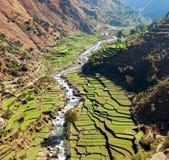 Campo colgante hermoso del arroz en valle alrededor del río Imagenes de archivo