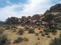 Campo, colline, alberi di Joshua e cielo Fotografia Stock Libera da Diritti