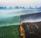 Campo collinoso colline pittoresche del campo di autunno immagine stock libera da diritti